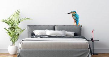 Αυτοκόλλητα Τοίχου - Πολύχρωμο πουλί
