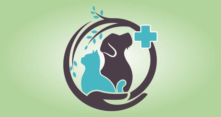 Αυτοκόλλητα καταστημάτων - Dog and cat veterinarian